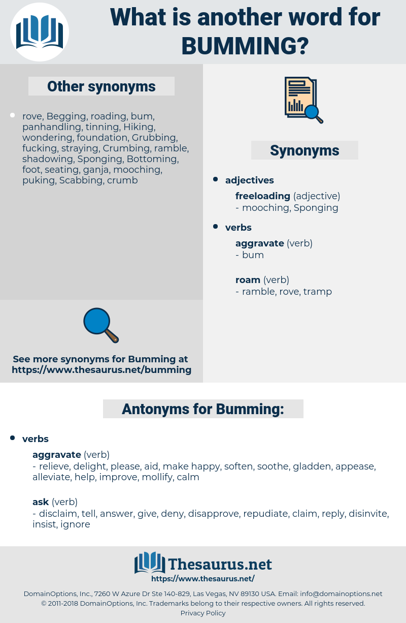 Bumming, synonym Bumming, another word for Bumming, words like Bumming, thesaurus Bumming