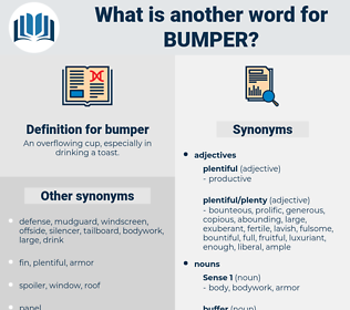 bumper, synonym bumper, another word for bumper, words like bumper, thesaurus bumper