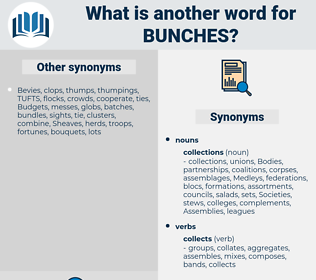 bunches, synonym bunches, another word for bunches, words like bunches, thesaurus bunches
