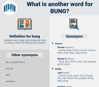 bung, synonym bung, another word for bung, words like bung, thesaurus bung