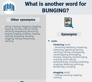 Bunging, synonym Bunging, another word for Bunging, words like Bunging, thesaurus Bunging