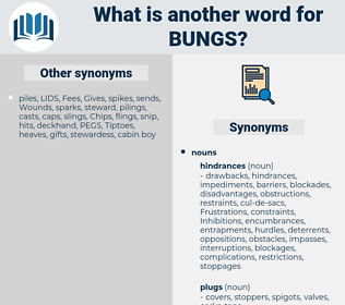 bungs, synonym bungs, another word for bungs, words like bungs, thesaurus bungs