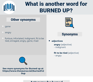 burned up, synonym burned up, another word for burned up, words like burned up, thesaurus burned up