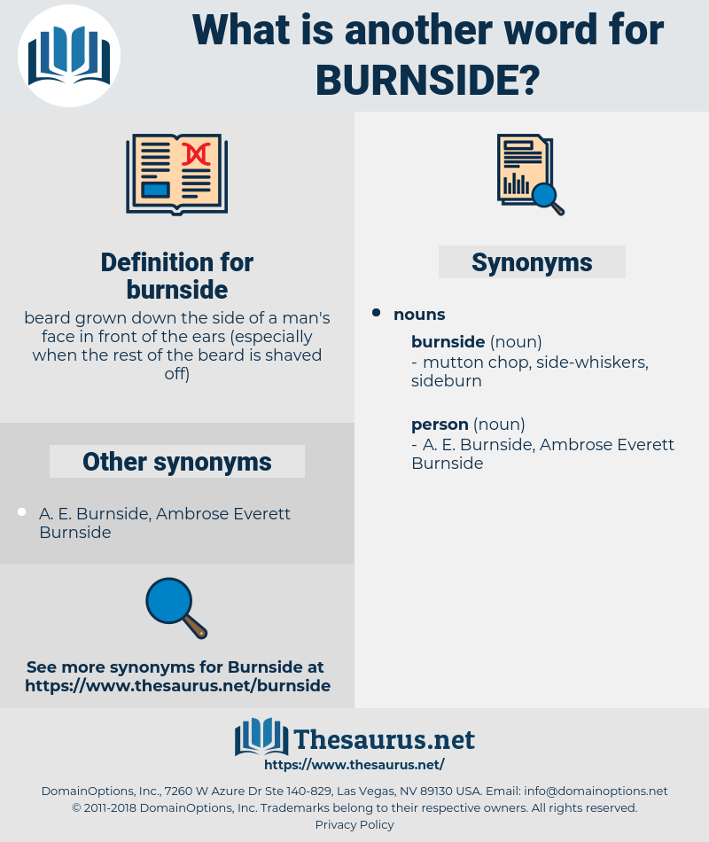 burnside, synonym burnside, another word for burnside, words like burnside, thesaurus burnside