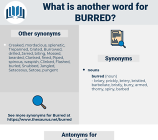 burred, synonym burred, another word for burred, words like burred, thesaurus burred