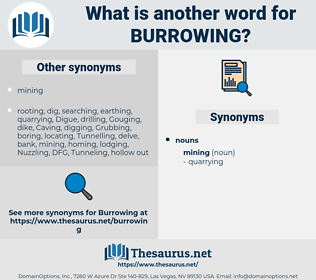 Burrowing, synonym Burrowing, another word for Burrowing, words like Burrowing, thesaurus Burrowing