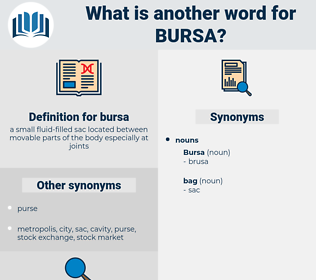 bursa, synonym bursa, another word for bursa, words like bursa, thesaurus bursa
