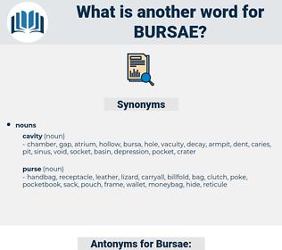 Bursae, synonym Bursae, another word for Bursae, words like Bursae, thesaurus Bursae