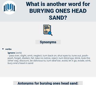 burying ones head sand, synonym burying ones head sand, another word for burying ones head sand, words like burying ones head sand, thesaurus burying ones head sand