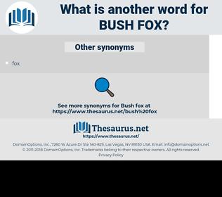 bush fox, synonym bush fox, another word for bush fox, words like bush fox, thesaurus bush fox