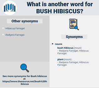 bush hibiscus, synonym bush hibiscus, another word for bush hibiscus, words like bush hibiscus, thesaurus bush hibiscus