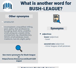 bush league, synonym bush league, another word for bush league, words like bush league, thesaurus bush league