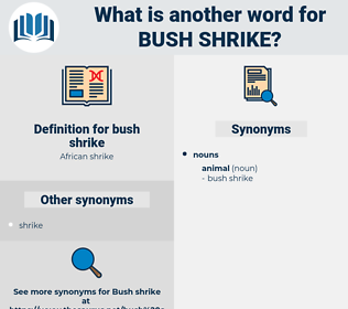 bush shrike, synonym bush shrike, another word for bush shrike, words like bush shrike, thesaurus bush shrike