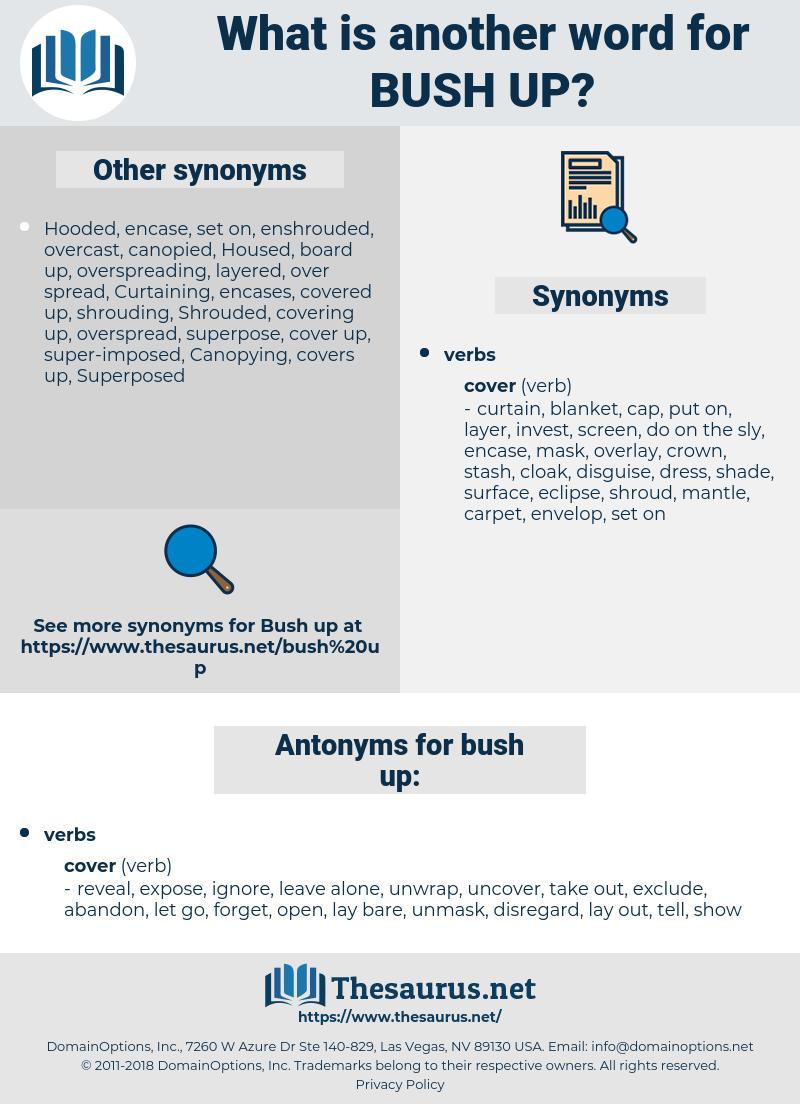 bush up, synonym bush up, another word for bush up, words like bush up, thesaurus bush up