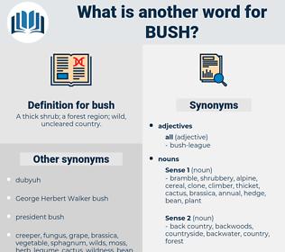 bush, synonym bush, another word for bush, words like bush, thesaurus bush