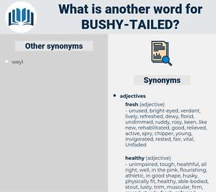 bushy tailed, synonym bushy tailed, another word for bushy tailed, words like bushy tailed, thesaurus bushy tailed