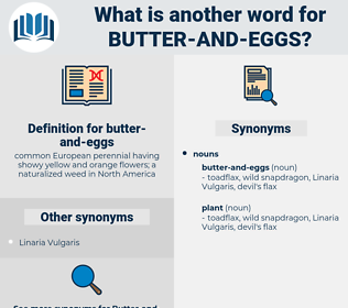 butter-and-eggs, synonym butter-and-eggs, another word for butter-and-eggs, words like butter-and-eggs, thesaurus butter-and-eggs