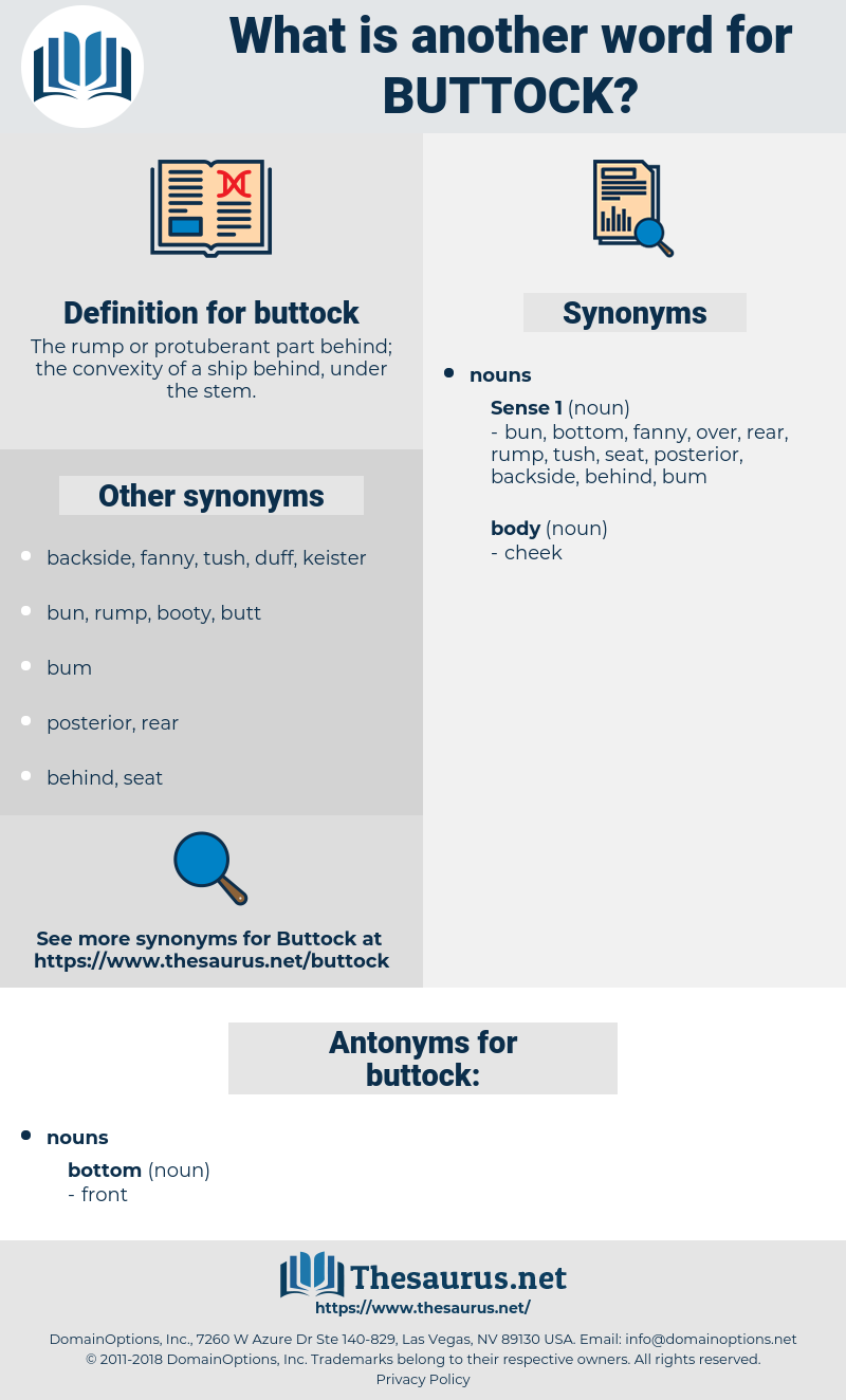 buttock, synonym buttock, another word for buttock, words like buttock, thesaurus buttock