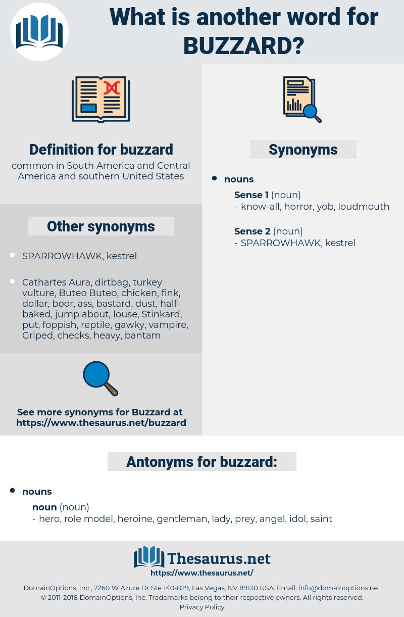 buzzard, synonym buzzard, another word for buzzard, words like buzzard, thesaurus buzzard