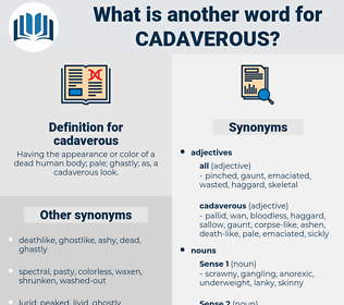 cadaverous, synonym cadaverous, another word for cadaverous, words like cadaverous, thesaurus cadaverous