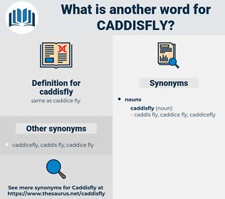 caddisfly, synonym caddisfly, another word for caddisfly, words like caddisfly, thesaurus caddisfly