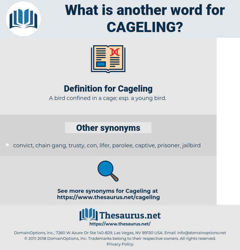 Cageling, synonym Cageling, another word for Cageling, words like Cageling, thesaurus Cageling