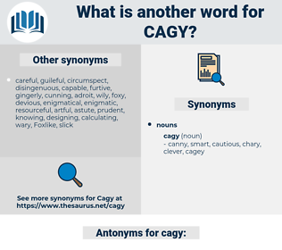 cagy, synonym cagy, another word for cagy, words like cagy, thesaurus cagy