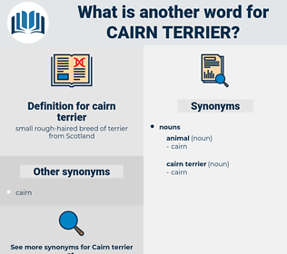 cairn terrier, synonym cairn terrier, another word for cairn terrier, words like cairn terrier, thesaurus cairn terrier