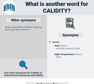 Calidity, synonym Calidity, another word for Calidity, words like Calidity, thesaurus Calidity