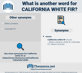 California White Fir, synonym California White Fir, another word for California White Fir, words like California White Fir, thesaurus California White Fir