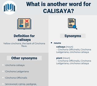 calisaya, synonym calisaya, another word for calisaya, words like calisaya, thesaurus calisaya