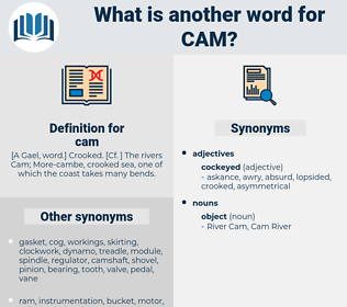 cam, synonym cam, another word for cam, words like cam, thesaurus cam