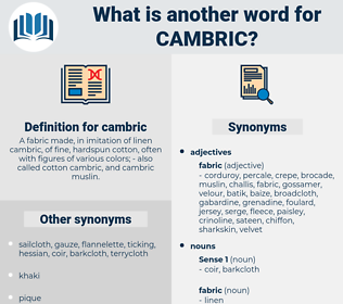 cambric, synonym cambric, another word for cambric, words like cambric, thesaurus cambric