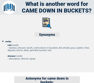 came down in buckets, synonym came down in buckets, another word for came down in buckets, words like came down in buckets, thesaurus came down in buckets