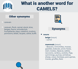 camels, synonym camels, another word for camels, words like camels, thesaurus camels