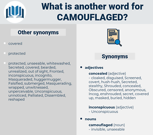 camouflaged, synonym camouflaged, another word for camouflaged, words like camouflaged, thesaurus camouflaged