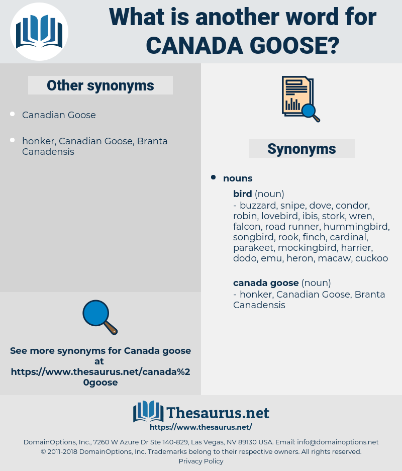 Canada Goose, synonym Canada Goose, another word for Canada Goose, words like Canada Goose, thesaurus Canada Goose