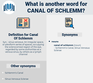 Canal Of Schlemm, synonym Canal Of Schlemm, another word for Canal Of Schlemm, words like Canal Of Schlemm, thesaurus Canal Of Schlemm