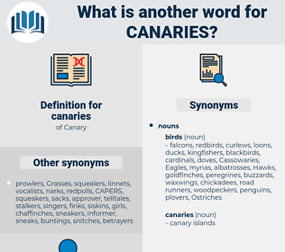 canaries, synonym canaries, another word for canaries, words like canaries, thesaurus canaries