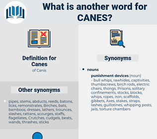 Canes, synonym Canes, another word for Canes, words like Canes, thesaurus Canes