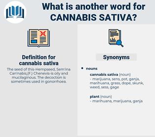 cannabis sativa, synonym cannabis sativa, another word for cannabis sativa, words like cannabis sativa, thesaurus cannabis sativa