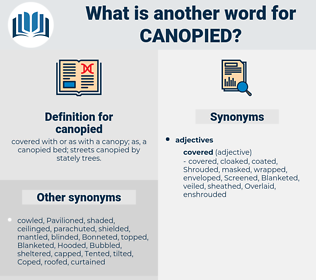 canopied, synonym canopied, another word for canopied, words like canopied, thesaurus canopied