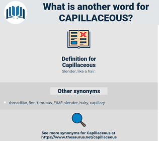 Capillaceous, synonym Capillaceous, another word for Capillaceous, words like Capillaceous, thesaurus Capillaceous