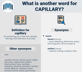 capillary, synonym capillary, another word for capillary, words like capillary, thesaurus capillary