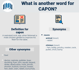 capon, synonym capon, another word for capon, words like capon, thesaurus capon