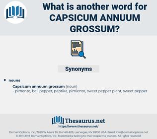 Capsicum Annuum Grossum, synonym Capsicum Annuum Grossum, another word for Capsicum Annuum Grossum, words like Capsicum Annuum Grossum, thesaurus Capsicum Annuum Grossum