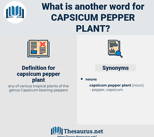 capsicum pepper plant, synonym capsicum pepper plant, another word for capsicum pepper plant, words like capsicum pepper plant, thesaurus capsicum pepper plant