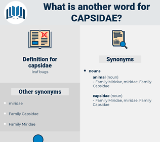 capsidae, synonym capsidae, another word for capsidae, words like capsidae, thesaurus capsidae