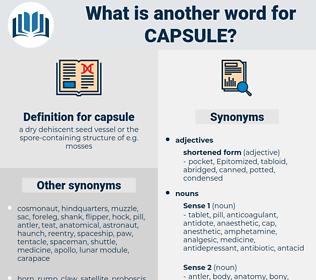 capsule, synonym capsule, another word for capsule, words like capsule, thesaurus capsule