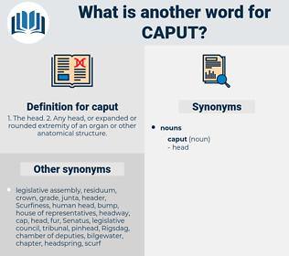 caput, synonym caput, another word for caput, words like caput, thesaurus caput